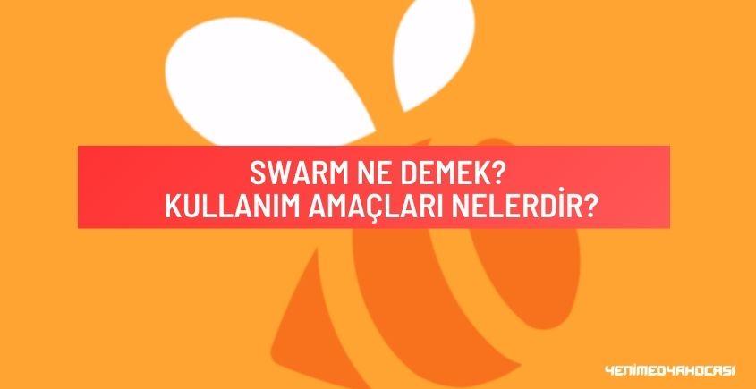 Swarm Ne Demek